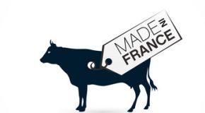 Crise de l'élevage : un modèle agricole à bout de souffle !