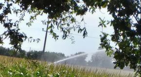 Sécheresse : à quand une vraie réforme de la politique agricole de l'eau ?