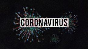 Covid-19 – Est-on immunisé après une première infection?
