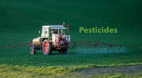 Pesticides : une consultation publique en catimini pour la protection des riverains