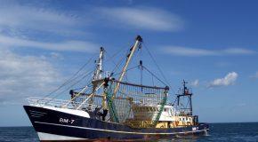 La pêche durable reste à quai! #OnVeutPlusDuChalut